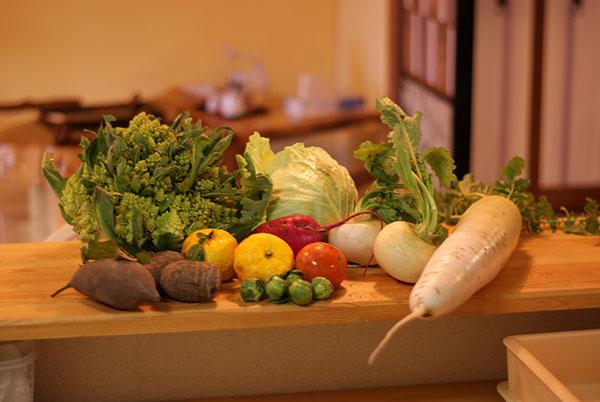 野菜の自家栽培